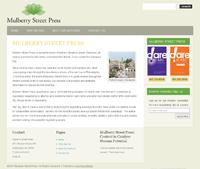 Mulberry Street Press